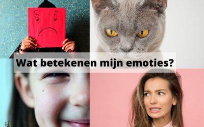 Welke betekenis hebben mijn emoties?