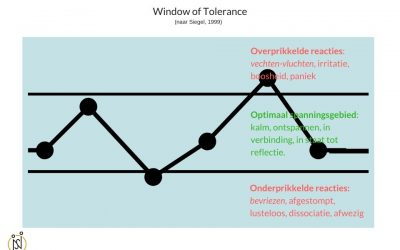 Stress, je hersenen en het Window of Tolerance