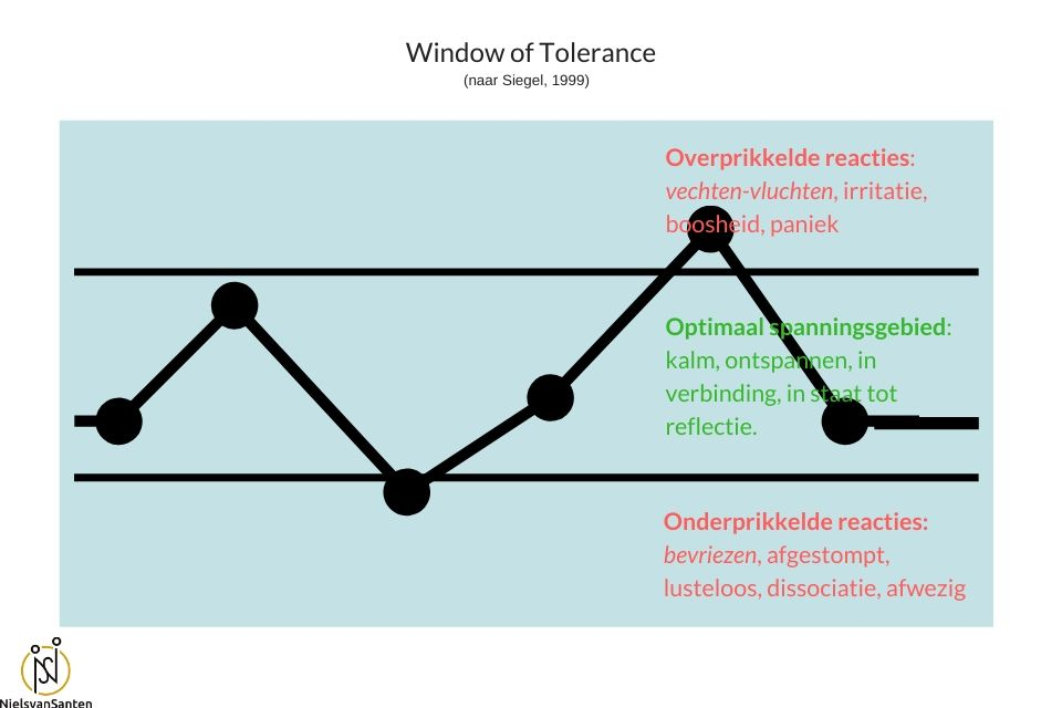 Stress je hersenen en het Window of Tolerance