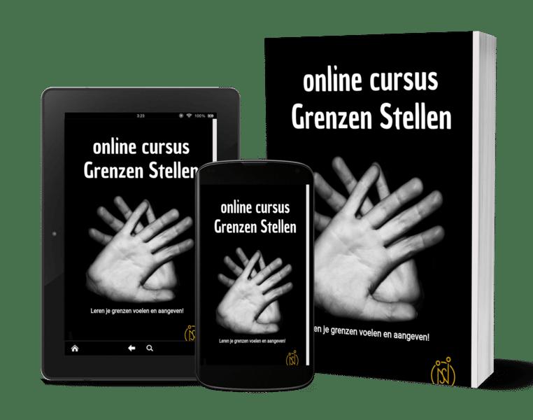 online cursus grenzen stellen